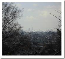生駒山の麓から望む「あべのハルカス」