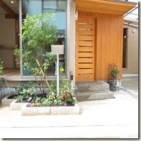 1本の樹木が狭小な玄関先を引き締める。