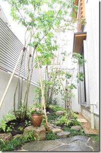 雑木の特徴を活かした階層的な空間づくり