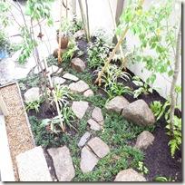 狭小地での雑木の庭