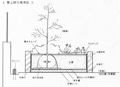 屋上緑化の基本構造