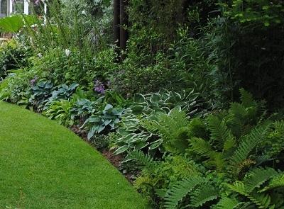 芝、半日陰、花壇