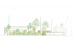 雑木のアプローチ 立面図